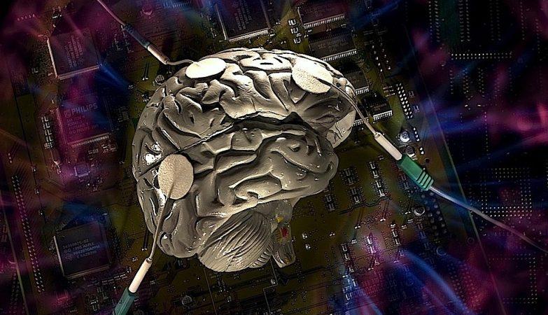 """68b37736a12e54b039dc6b9019cf85b4 783x450 - CÉREBROS VIVOS COMO PROCESSADORES: Conheça a polêmica internet """"telepática"""" que propõe ligar cérebros humanos : VEJA VÍDEO"""