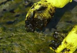 Manchas de óleo aparecem no Delta do Parnaíba, litoral do Piauí