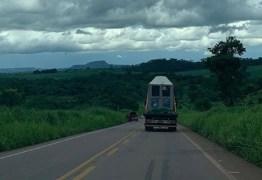 Caminhão que transportava elefanta Lady sofre pane elétrica