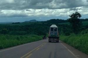 transporte de lady 300x200 - Caminhão que transportava elefanta Lady sofre pane elétrica