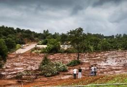 Para especialistas, novo relatório aponta para culpa da Vale em Brumadinho