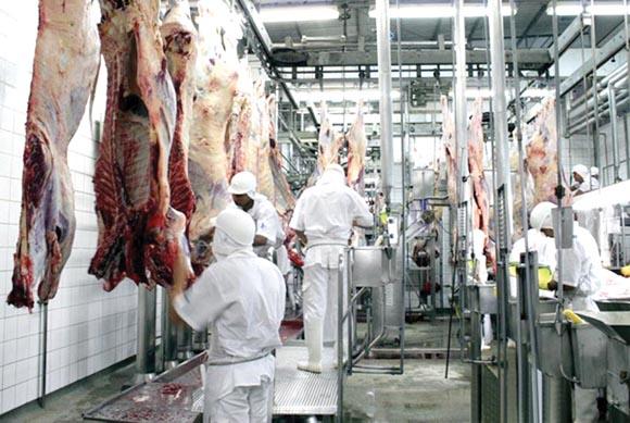 frigorífico - 'Preço da carne não vai voltar ao que era antes', diz Sindifrigo