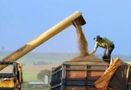 China pode tirar taxa para soja e porco dos EUA e isso deve afetar o Brasil