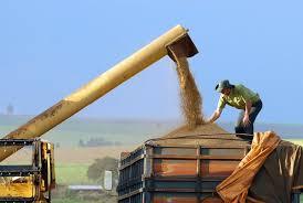 transferir 6 - China pode tirar taxa para soja e porco dos EUA e isso deve afetar o Brasil