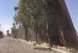 Muro de Trump na fronteira com México é derrubado por ventos fortes – VEJA VÍDEO