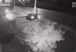 Motociclista é derrubada por escada levada em carro – VEJA VÍDEO
