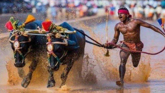 xblog india.jpg.pagespeed.ic .YAzxP7Pdif - Operário indiano 'bate recorde mundial' de Usain Bolt - VEJA VÍDEO