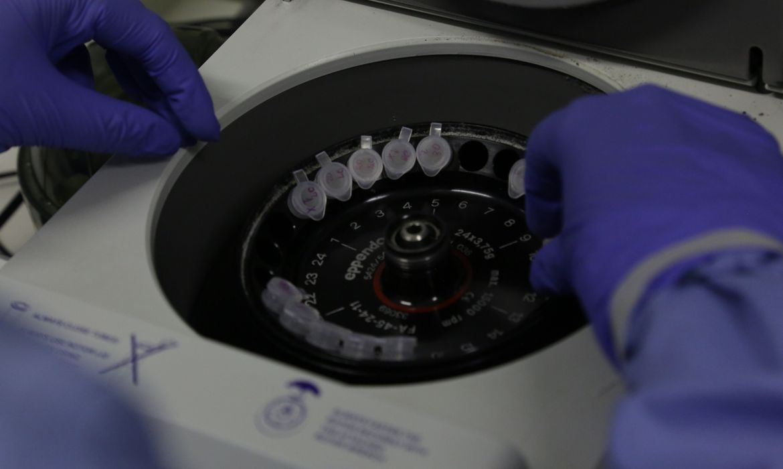 coronavirus 2 - Coronavírus: primeiro caso da Paraíba levou 16 dias para ser confirmado