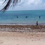 BANHO PROIBIDO BESSA CARIBESSA 4 - Banhistas desrespeitam isolamento e vão à praia, em João Pessoa