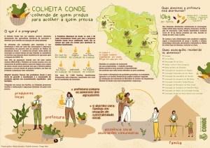 Colheita Conde 300x212 - Prefeitura de Conde investe R$ 117 mil em agricultura familiar e reverte produção para atender população em situação de risco