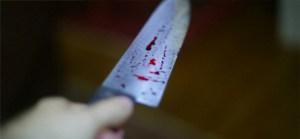 Facada 27 300x139 - Mulher se recusa a ter relações com cunhado e é morta com facada no pescoço na PB
