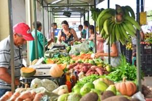 cecaf 300x200 - Agricultores familiares realizam feira online em João Pessoa durante período de isolamento social