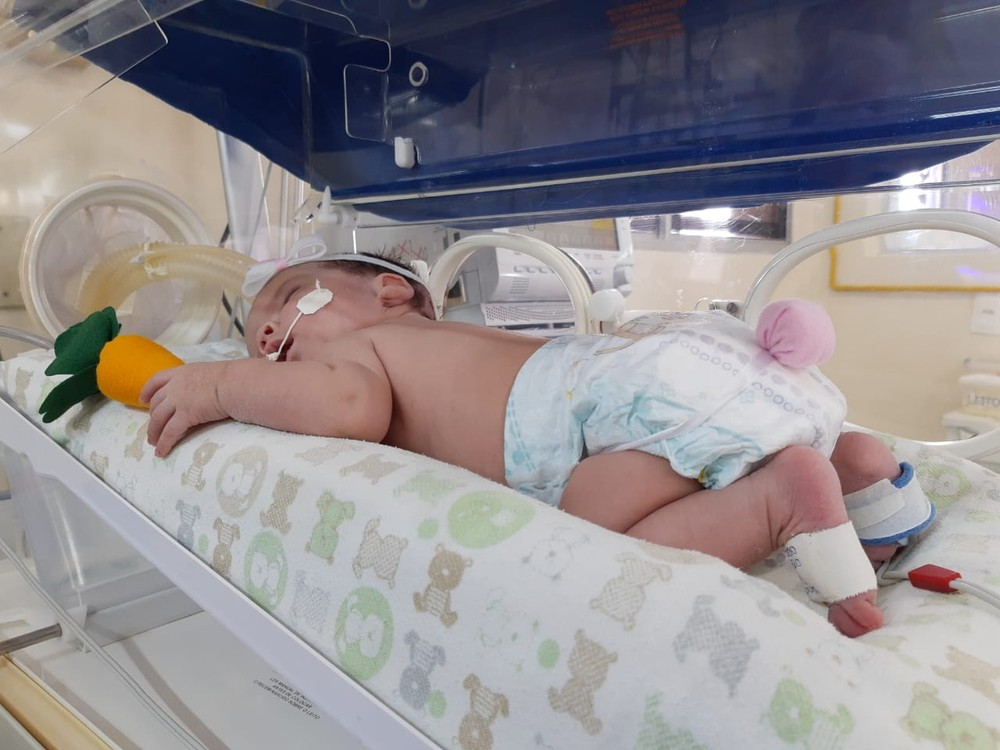 whatsapp image 2020 04 12 at 10.57.45 1  - HUMANIZAÇÃO DOS PACIENTES: Bebês de UTI Neonatal são fantasiados de 'coelhinhos da Páscoa'