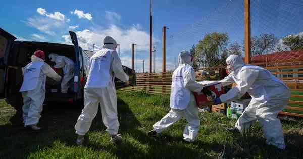 20200503220501944361i - Estados Unidos registram 1.450 mortes por coronavírus em 24 horas