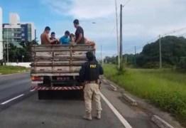 PRF na PB flagra motorista transportando oito pessoas na carroceria de caminhão