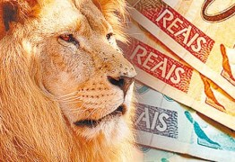 Entrega do Imposto de Renda com atraso tem multa a partir de hoje