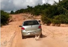 Cachorro é arrastado com corda no pescoço por veículo por mais de 1 km