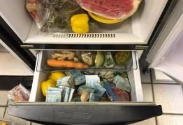 R$ 100 MIL: PF apreende dinheiro em geladeira e freezer em operação contra tráfico internacional