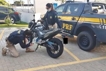 WhatsApp Image 2020 07 14 at 14.11.37 - PRF na Paraíba recupera motocicleta roubada e adquirida em site de compra e venda