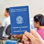 carteira de trabalho 2 - 1,4 mil empregos formais foram gerados em outubro, na Paraíba