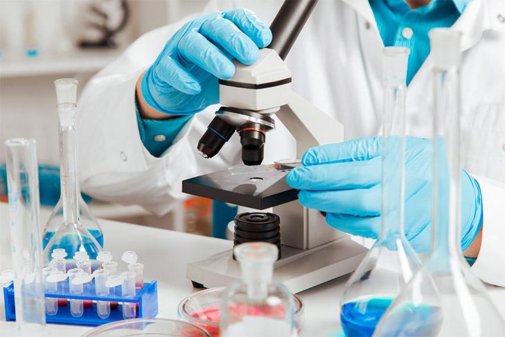estrutura tecnica de um laboratorio de analises clinicas - Pesquisadores paraibanos buscam evidências de remédio natural para Covid-19