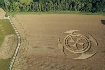 franca2 - Símbolo gigantesco em campo de trigo atrai atenção de curiosos na França