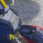 moto motociclista embriagado prf compartimento cooler bebidas alcoolicas - PRF flagra motoqueiro embriagado usaando compartimento da moto como cooler