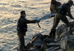 Bombeiros encontram corpo de homem nas pedras do dique de Cabedelo