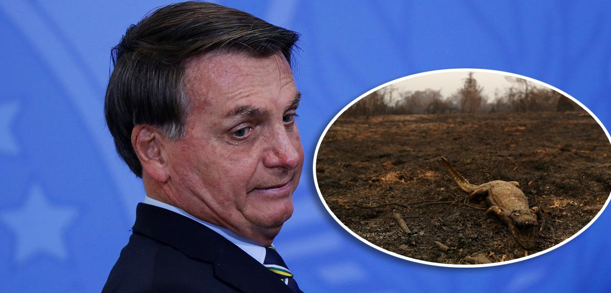 bozoo - Bolsonaro minimiza incêndios na Amazônia e Pantanal: 'Críticas desproporcionais'