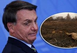Bolsonaro minimiza incêndios na Amazônia e Pantanal: 'Críticas desproporcionais'