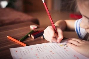 crianca estudante foto pixabay 300x200 - Inquérito sorológico para avaliação de retorno das aulas presenciais na Paraíba deverá ser concluído apenas em dezembro