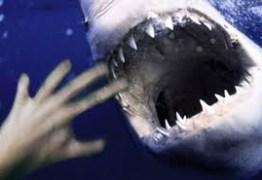 Tubarão atravessa rede de proteção e mata surfista; VEJA VÍDEO