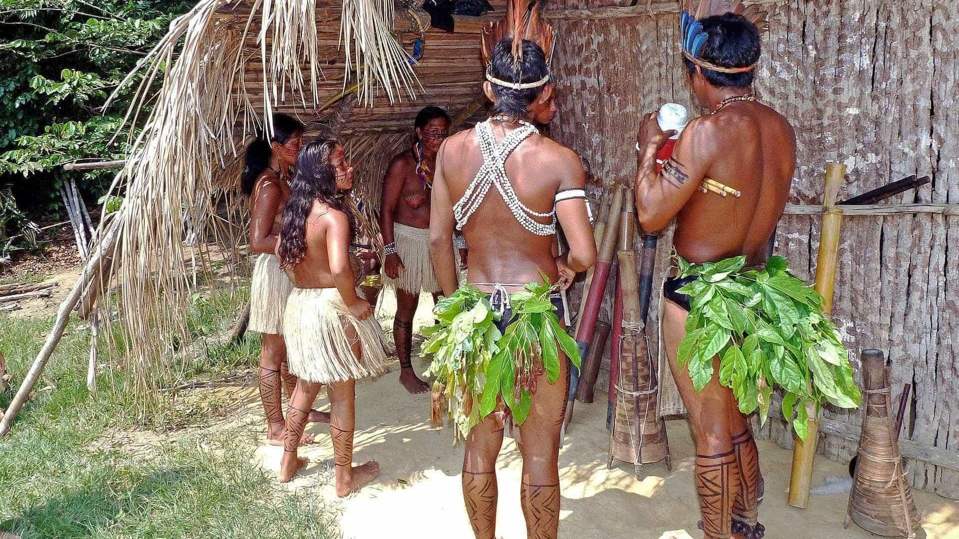 naom 58f780bb73a62 - Invasões em terras indígenas crescem 135% no governo Bolsonaro