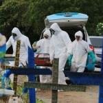 show mortes covid 4745951E 7879 4E49 B232 A47A1A50F66A - Brasil tem mais 38.903 casos e 761 mortes por covid-19