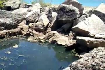 Moradores denunciam descaso com esgoto aberto, no Dique de Cabedelo, que cai diretamente no mar – VEJA VÍDEO