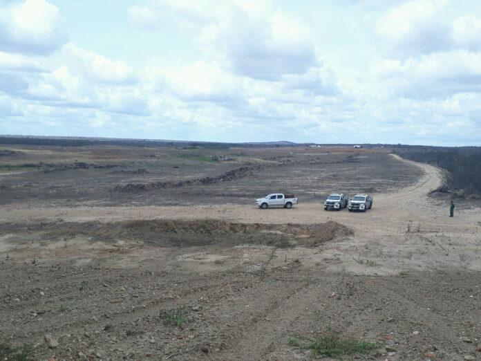 Operacao Mandacaru 01 696x522 1 - 287 hectares de área foram desmatados na Caatinga da PB, segundo Ibama