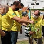 Plantio de muda Unimed JP - Unimed JP vai distribuir cerca de 300 mudas de árvores nativas nesta quinta-feira (26)