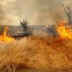 download 6 - Inmet publica alerta de risco de incêndios florestais em 111 municípios da Paraíba