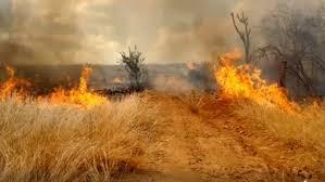 Inmet publica alerta de risco de incêndios florestais em 111 municípios da Paraíba