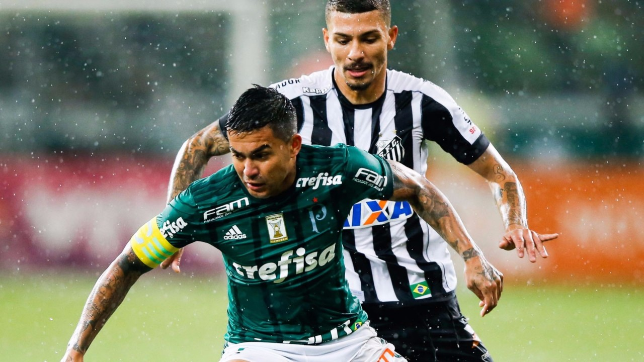 Palmeiras x Santos Notas - Conmebol deve aliviar protocolo para final da Libertadores no Maracanã
