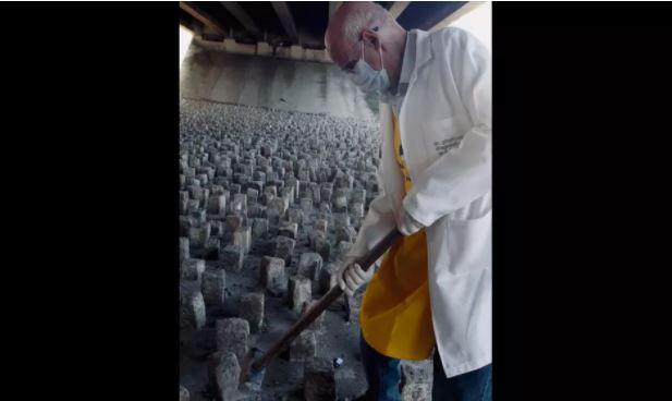 Capturar.JPGuuu - Padre Júlio Lancelotti quebra a marretadas pedras instaladas pela Prefeitura sob viadutos de SP