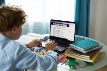 FOTO 2 1 - Guia gratuito com assuntos escolares entra para lista de consulta dos estudantes