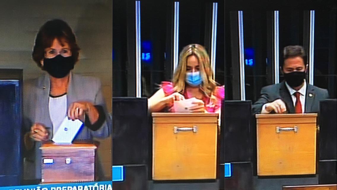 WhatsApp Image 2021 02 01 at 18.09.15 - NILDA GONDIM, VENEZIANO VITAL E DANIELLA RIBEIRO: senadores paraibanos votam na eleição da Mesa Diretora do Senado