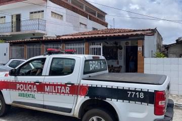 WhatsApp Image 2021 02 24 at 13.56.01 - TOQUE DE RECOLHER: forças de segurança iniciam nesta quarta (24) fiscalização contra aglomerações na PB