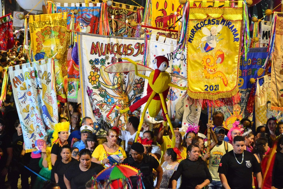 carnaval folia de rua foto kleide teixeira 05 - FORA DA AVENIDA: com sentimento de saudade, bloco Muriçocas do Miramar comemora 35 anos