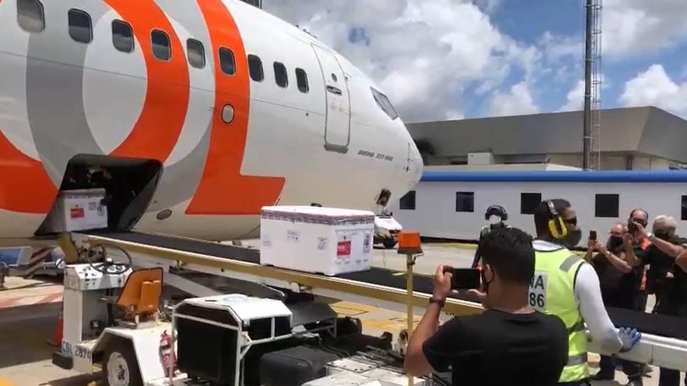 novas vacinas - NOVO LOTE: Confira a quantidade de doses da CoronaVac que cada município paraibano irá receber
