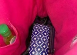 SUSTO! Mulher encontra cobra venenosa ao abrir sua bolsa