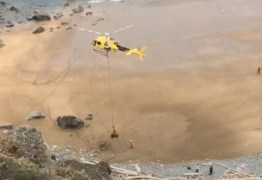 Vídeo mostra touro de 800 kg sendo resgatado por helicóptero em praia; confira