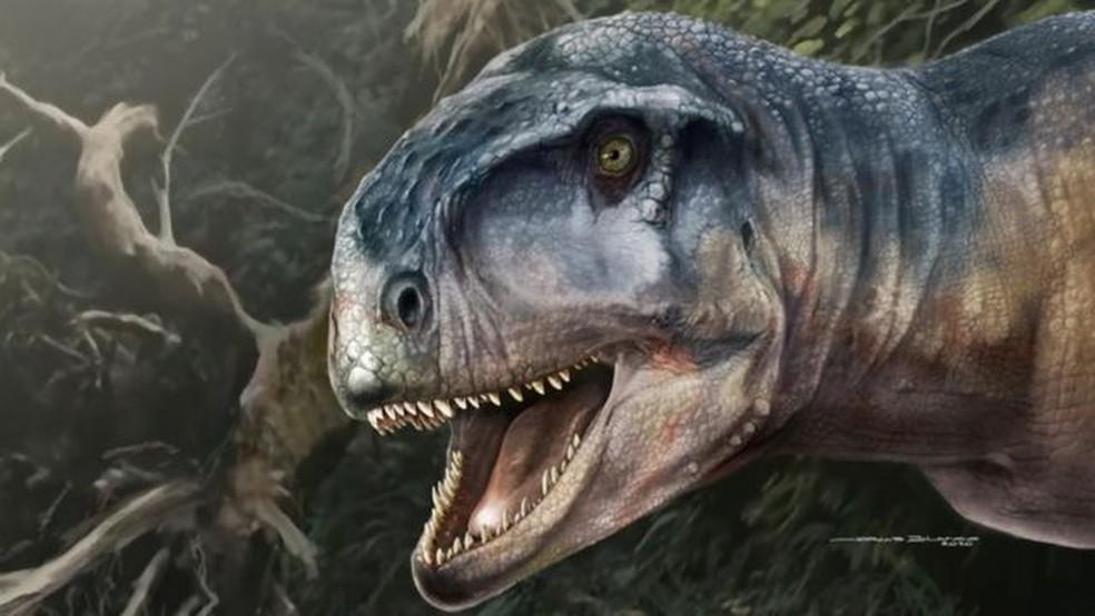 download - Crânio de dinossauro 'amedrontador' é encontrado na Patagônia