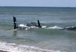 SUSTO: piloto faz pouso de emergência no mar durante apresentação – VEJA VÍDEO